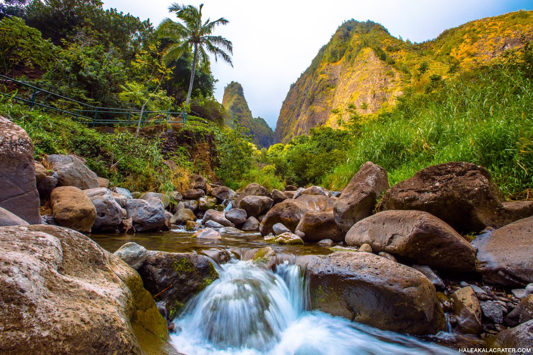 Iao Valley Tour